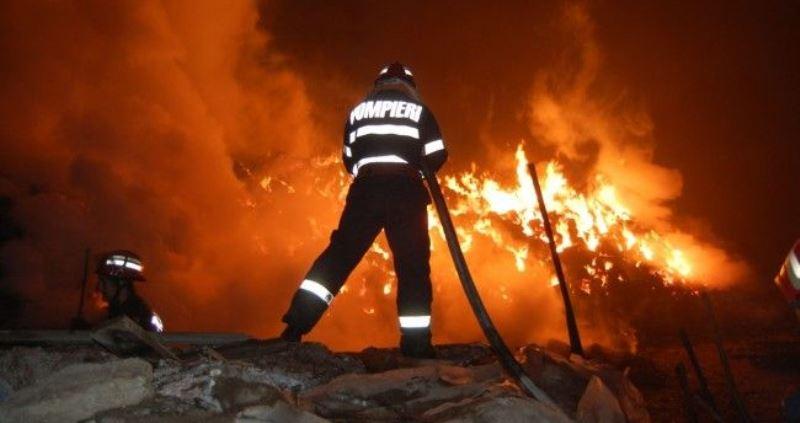 incendii 2019